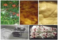 �szibarackos finoms�g (saj�t �tlet)